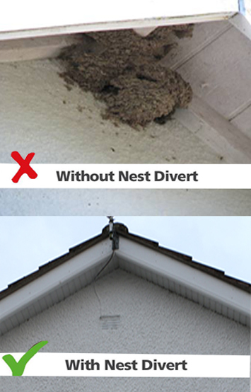 NestDivert with and without